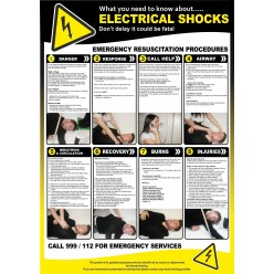 Electric Shocks Poster 420 x 595mm - Semi Rigid Plastic