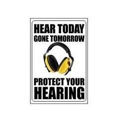 Hear Today Gone Tomorrow
